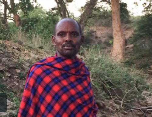Maasai Elders Video