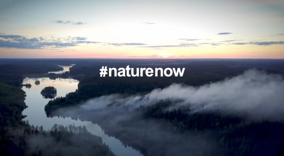 Nature Now: Hope for the Future